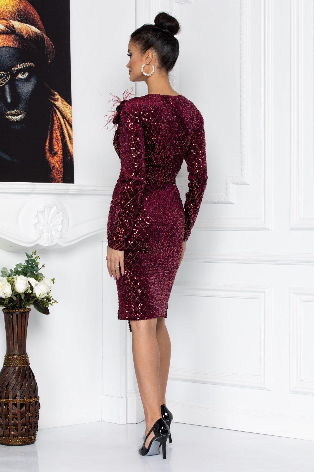 Μπορντό Κρουαζέ Φόρεμα Με Πούλιες Monique 8707